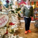 Record online deals give short U.S. Christmas shopping season a lift: report