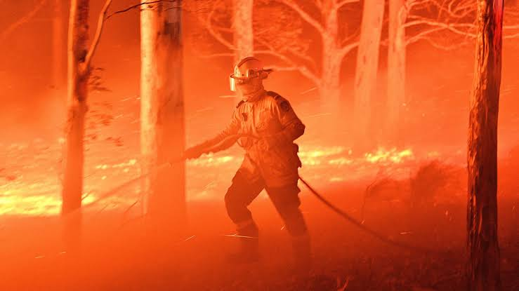 Australia fires: nearly 2,000 house annihilated in marathon emergency