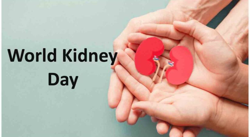 World Kidney Day 2021: Here are everything you need to know about this day