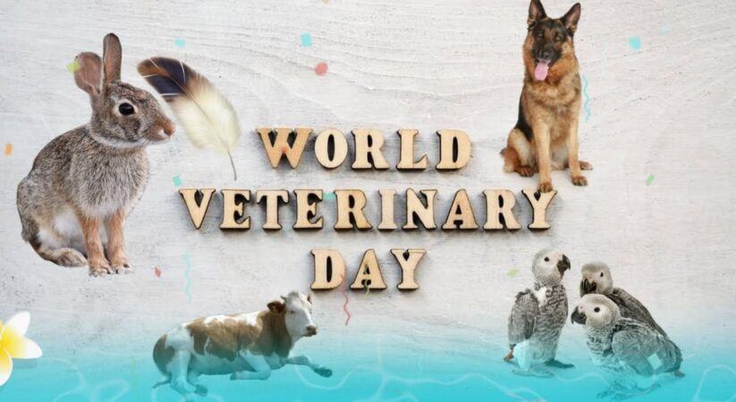 World Veterinary Day 2021: Here's all you need to know about this day