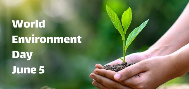 World Environment Day 2021: Know Theme, History and Importance of the day